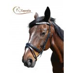 Bridles & Equipment